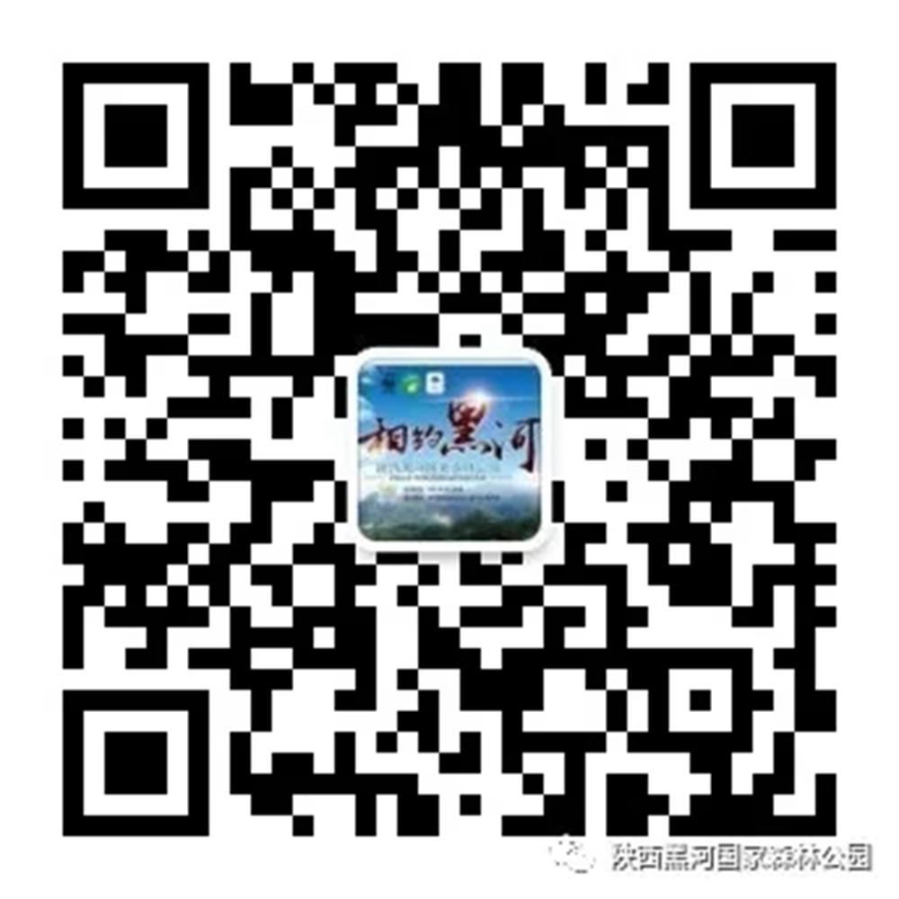 202103121719493018.jpg